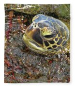 Honu In The Water Fleece Blanket