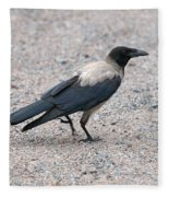 Hooded Crow Fleece Blanket