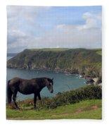 Horse Along Coastal Path Cornwall Fleece Blanket