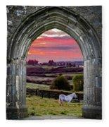 Horse At Sunrise In County Clare Fleece Blanket by James Truett