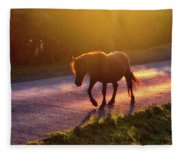 Horse Crossing The Road At Sunset Fleece Blanket