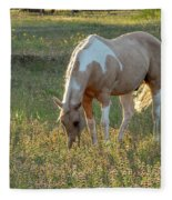 Horse Feeding In Grass Farm With Sunset Light From The Left Fleece Blanket