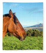 Horse Head Closeup Fleece Blanket