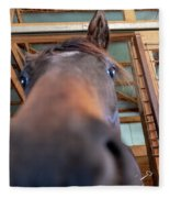 Horse Hello Fleece Blanket