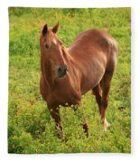 Horse In A Field With Flowers Fleece Blanket