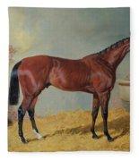 Horse In A Stable Fleece Blanket
