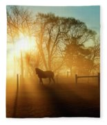 Horse In The Fog At Dawn Fleece Blanket