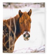 Horse In Winter Fleece Blanket