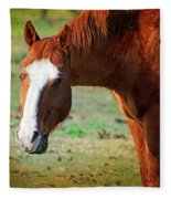 Horse Look Fleece Blanket
