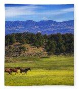 Horse Play Fleece Blanket