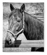 Horse Portrait In Black And White Fleece Blanket