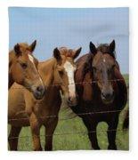 Horse Quartet Fleece Blanket