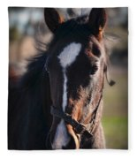 Horse Whispering Fleece Blanket