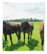 Horses In Bridgehampton Fleece Blanket