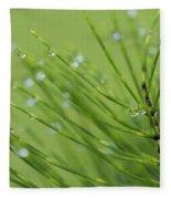 Horsetail With Dew Fleece Blanket