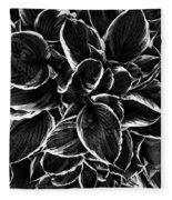 Hosta In Black And White Fleece Blanket