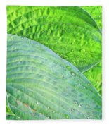 Hosta Lavista Baby Fleece Blanket