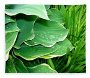 Hosta Leaves And Waterdrops Fleece Blanket