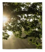Hot Golden Mists Of Summer Fleece Blanket