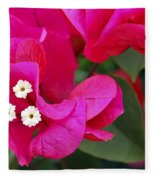 Hot Pink Bougainvillea Fleece Blanket