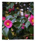 Hot Pink Camellias Glowing In The Shade Fleece Blanket