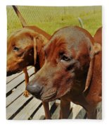 Hounds Fleece Blanket