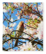 House Finch In The Cherry Blossoms Fleece Blanket
