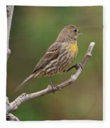 House Finch With Yellow Breast 1  Fleece Blanket