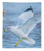 Hovering Seagull Fleece Blanket