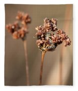 How Bees Keep Warm  Fleece Blanket