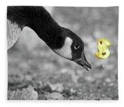 How To Eat An Apple Fleece Blanket