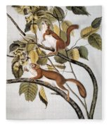 Hudsons Bay Squirrel Fleece Blanket