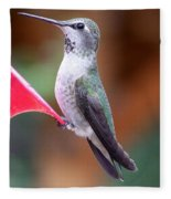 Hummingbird 1 Fleece Blanket