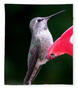 Hummingbird 23 Fleece Blanket