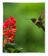 Hummingbird And Scarlet Sage Fleece Blanket