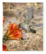 Hummingbird And The Hedgehog  Fleece Blanket