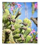 Hummingbird And The Saguaro  Fleece Blanket