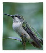 Hummingbird Close-up Fleece Blanket