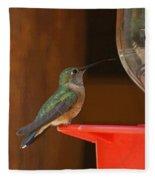 Hummingbird De Fleece Blanket