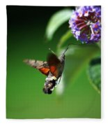 Hummingbird Hawk Moth - Five Fleece Blanket