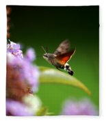 Hummingbird Hawk Moth - Four Fleece Blanket