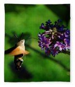 Hummingbird Hawk Moth 2 Fleece Blanket