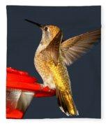 Hummingbird In My Window Fleece Blanket