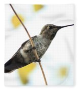 Hummingbird On Tightrope Fleece Blanket