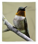 Hummingbird Portrait Square Fleece Blanket