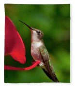 Hummingbird Fleece Blanket