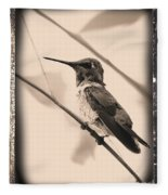 Hummingbird With Old-fashioned Frame 3 Fleece Blanket