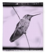 Hummingbird With Old-fashioned Frame 4 Fleece Blanket