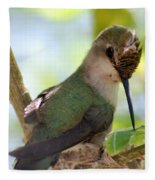 Hummingbird With Small Nest Fleece Blanket