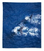 Humpback Whales Aerial Fleece Blanket